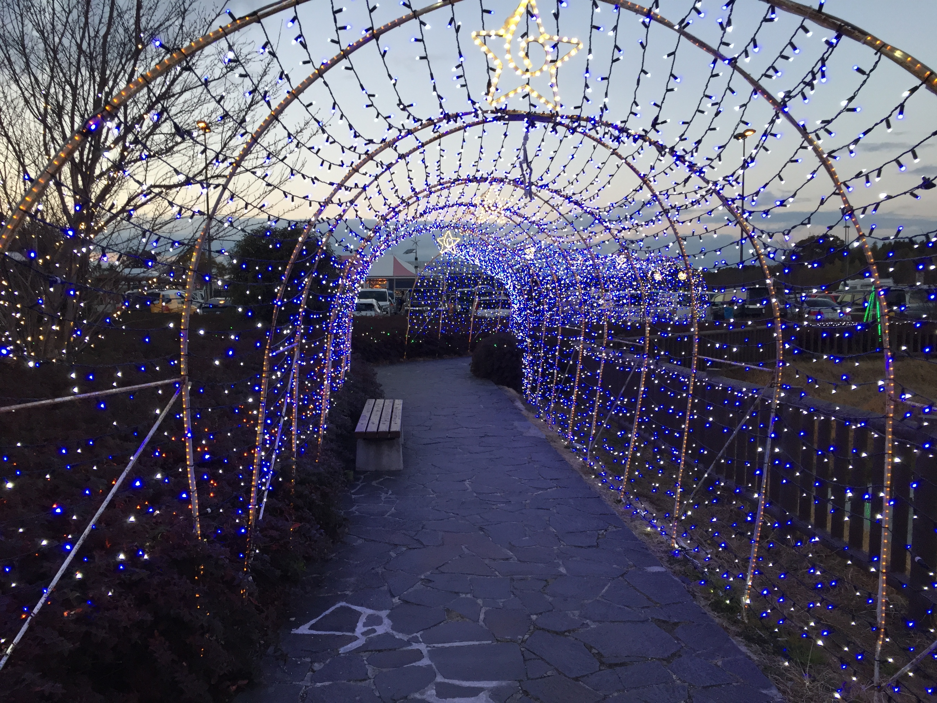 kariya-highway-oasis-illumination