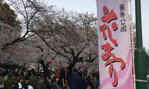 tsurumapark-sakura