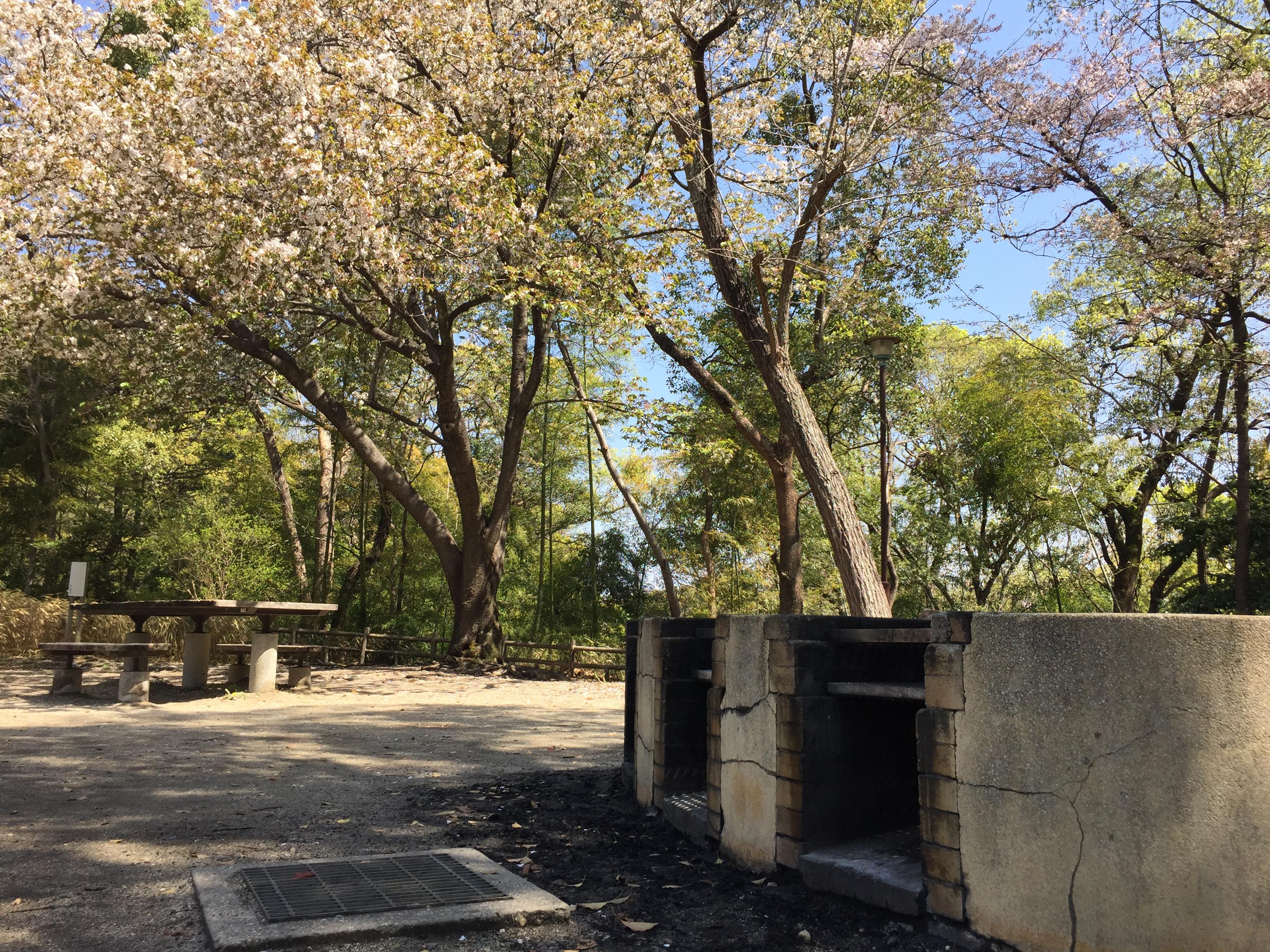 kanoko-park-bbq