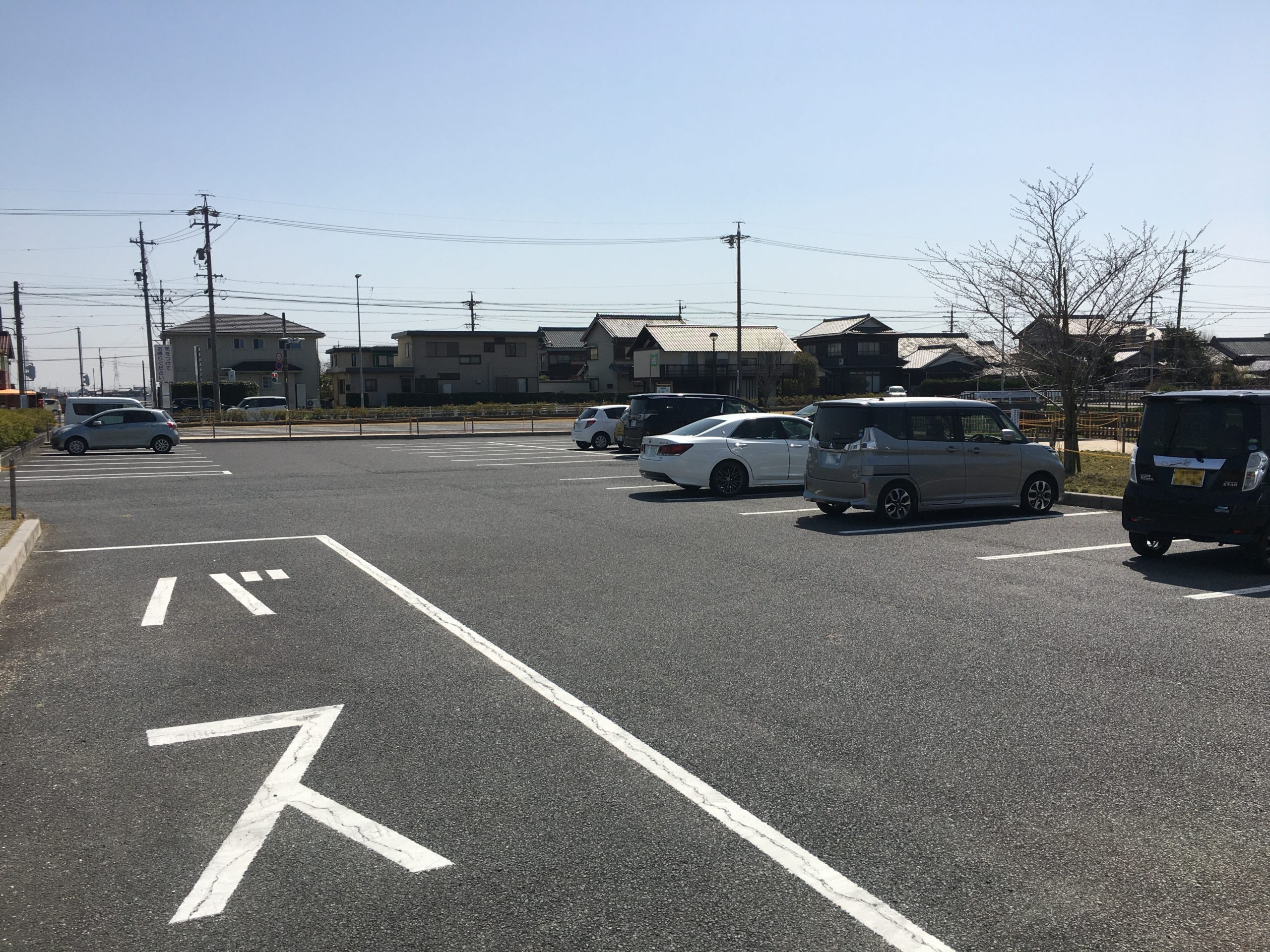 shibazakura-yatomi